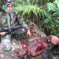 Indonesian west papua genocide